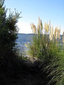 Lac d'Hourtin et de Carcans