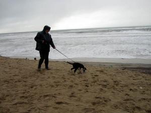 Am windigen Strand