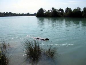 Einladender See